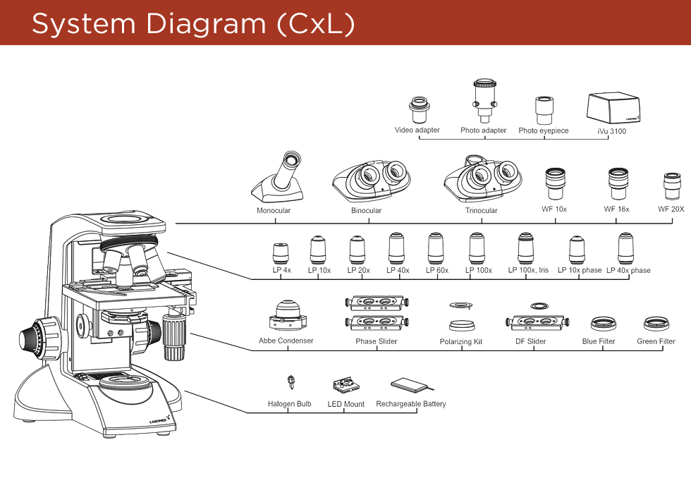 cxl-diagram