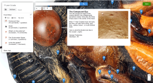 GIGAmacro Annotate